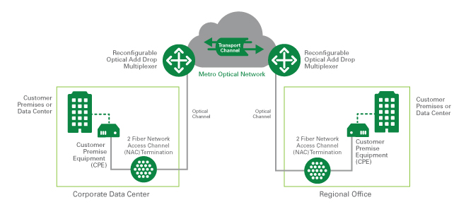 metro optical network drawing-1